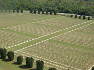 Allied War Cemetery Germany